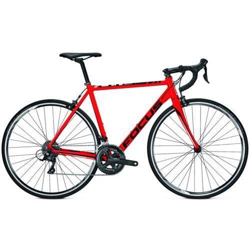 Focus CAYO AL SORA - Rower szosowy (Czerwony)