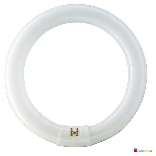 MASTER TL-E Circular Super 80 40W/840 świetlówki liniowe Philips z kategorii świetlówki