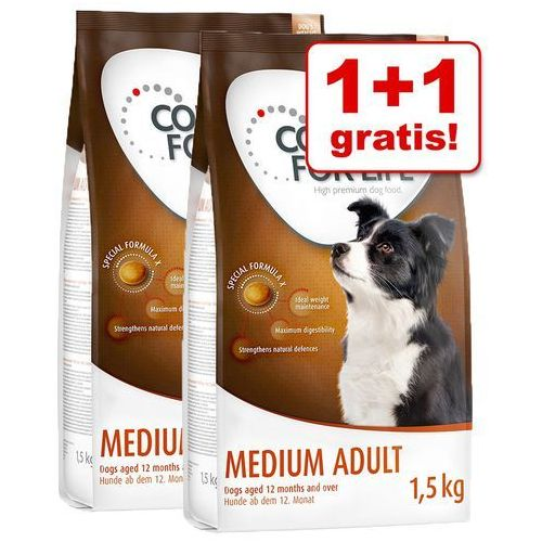1+1 gratis! Concept for Life karma sucha dla psa, 2 x 1,5 kg - Medium Junior (4260358512617)