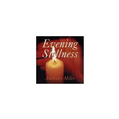 New world records Evening stillness, kategoria: pozostała muzyka