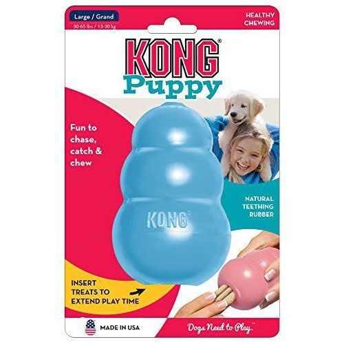 Kong company Kong puppy m