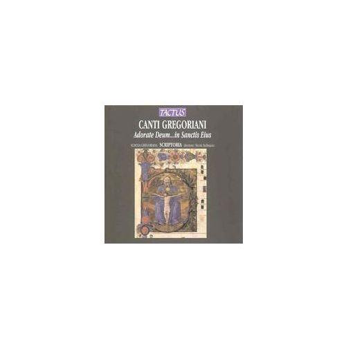 Adorate Deum. . . In Sanctis, TC100002