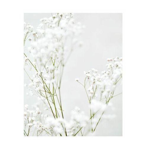 Art canvas Kanwa białe kwiaty ii 40 x 50 cm (5901844247918)