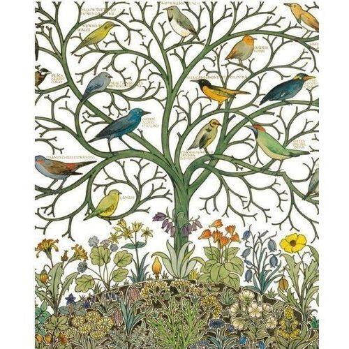 Museums & galleries Karnet 17x14 z kopertą birds of many climes textil