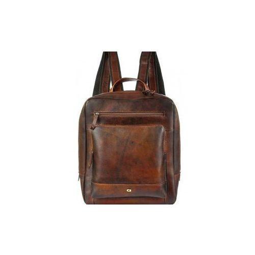 Alive 13 plecak skóra naturalna firmy na ramię z miejscem na notebook unisex marki Daag