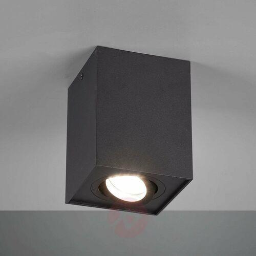Trio Lampa sufitowa leuchten biscuit czarny, 1-punktowy - nowoczesny - obszar wewnętrzny - biscuit - czas dostawy: od 3-6 dni roboczych