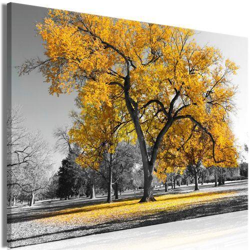 Artgeist Obraz - jesień w parku (1-częściowy) szeroki złoty
