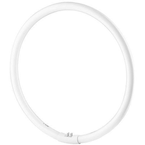 świetlówka pierścieniowa 40w t9 5400 k marki Freepower