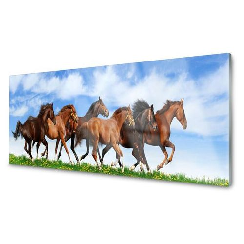 Tulup.pl Obraz akrylowy konie w galopie na pastwisku
