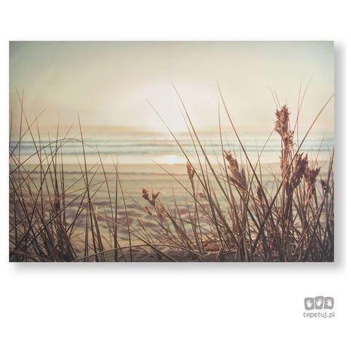 Obraz Piaszczysta plaża - zachód słońca 105889 Graham&Brown (5011583380194)