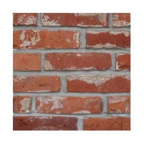 Płytki z cegły rozbiórkowej - Lica klasyczne Alejki Wilanowa