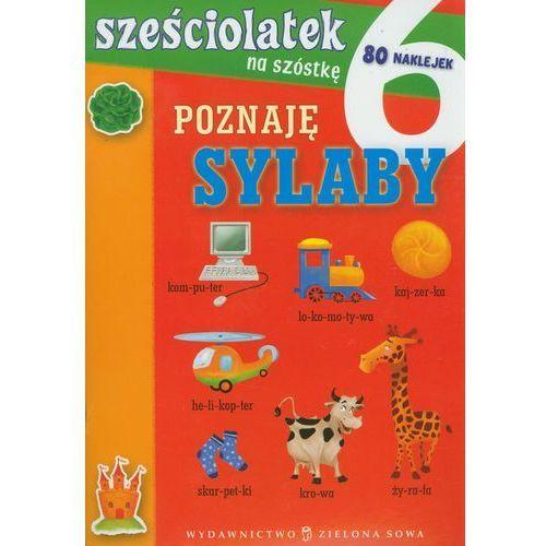 Sześciolatek na szóstkę Poznaję sylaby (opr. miękka)