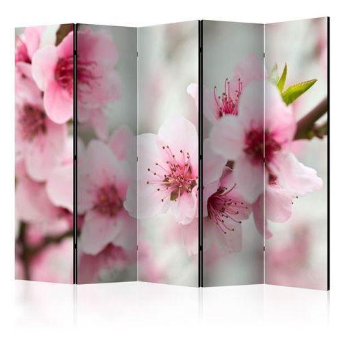Artgeist Parawan 5-częściowy - kwitnąca wiśnia - różowe kwiatuszki ii [room dividers]