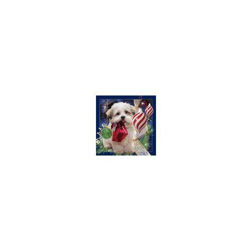 Worth keeping Pocztówka 3d świąteczny pies (5710431003000)