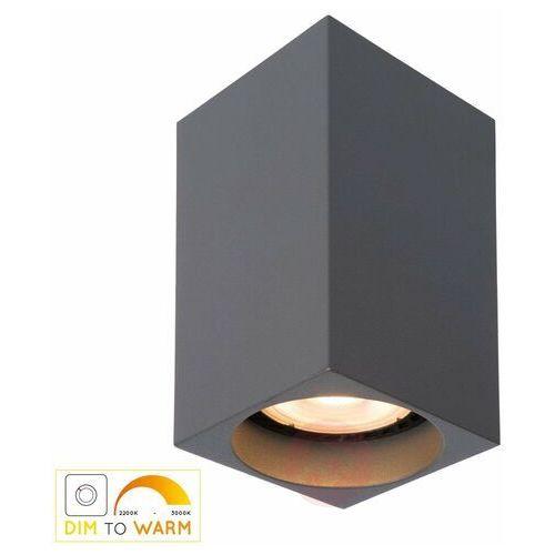 Lucide Delto Led 09916/06/36 Plafon lampa sufitowa 1x5W GU10 szary (5411212092397)