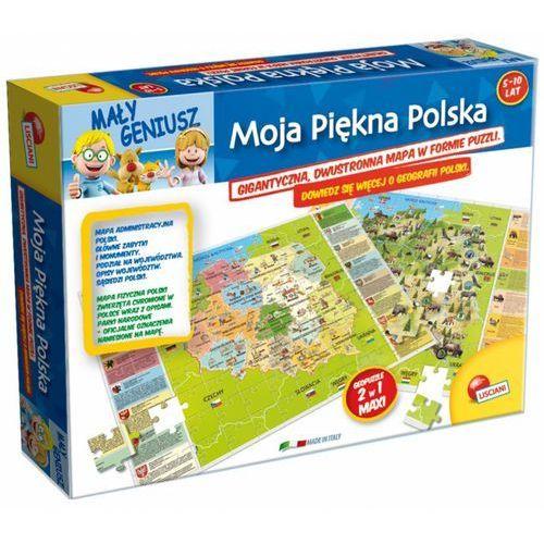 LISCIANIGIOCHI Mały Geniusz Moja Polska (8008324042043)