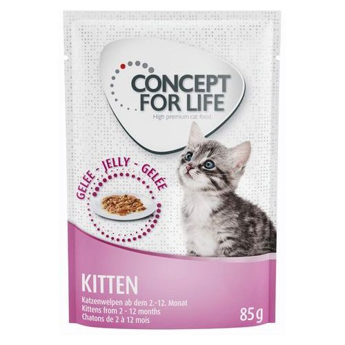 Concept for Life Kitten w galarecie - 12 x 85 g (4260358514956)