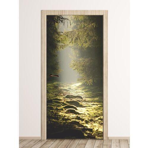 Fototapeta na drzwi promienie słońca na polanie fp 6073