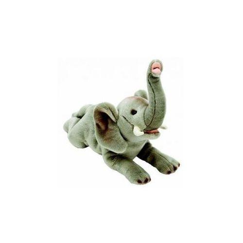 Suki słoń 35cm