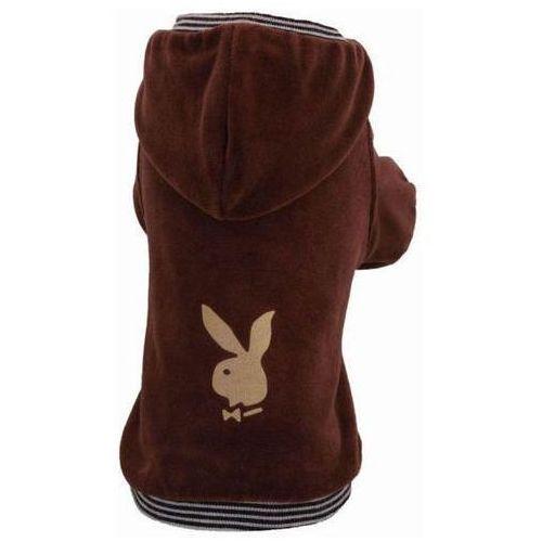bluza b19 bunny brązowa marki Grande finale