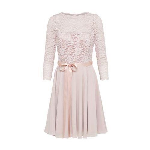 Swing Sukienka koktajlowa rose (4056877805749)
