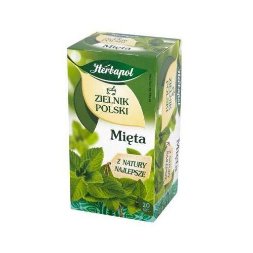 Herbapol 20x2g zielnik polski mięta herbata ziołowa