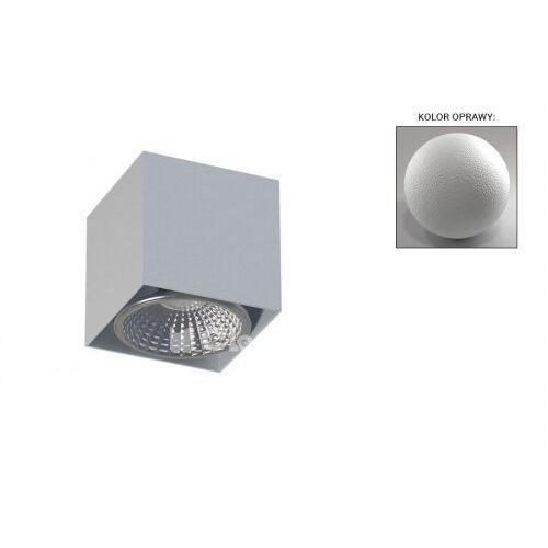 Cleoni Spot lampa oprawa sufitowa tito d2 1x13w gu10 biały beskidzki t113d2117
