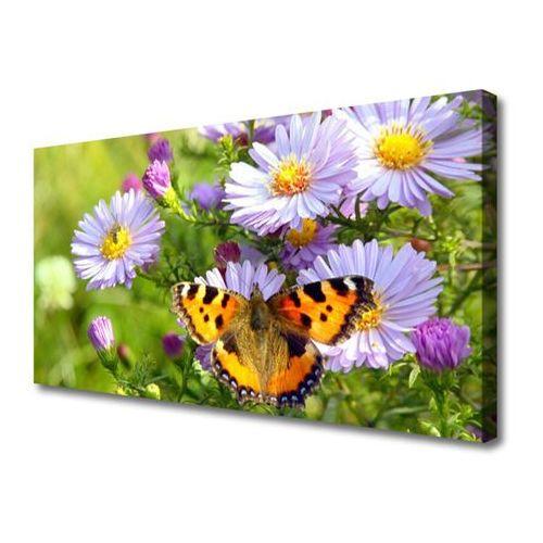 Tulup.pl Obraz na płótnie kwiaty motyl roślina natura