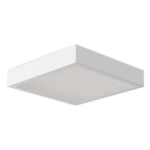 Cleoni Plafon lampa sufitowa nekla 40 pf103f 1152p1.117 kwadratowa oprawa metalowa biała (1000000260236)