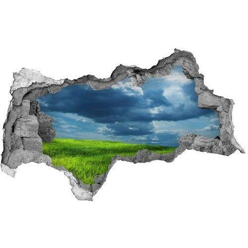 Wallmuralia.pl Dziura 3d w ścianie naklejka burzowe chmury
