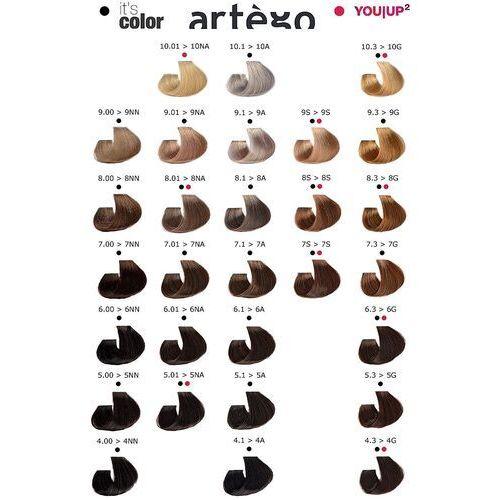 ARTEGO IT'S COLOR zestaw do koloryzacji włosów farba 150ml + oxydant 150ml 1,0 1N czarny 6 % - 20 vol., kolor czerń