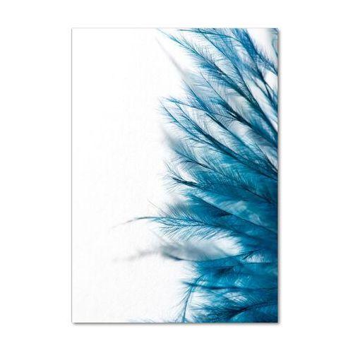 Wallmuralia.pl Foto obraz szklany pionowy niebieskie pióra