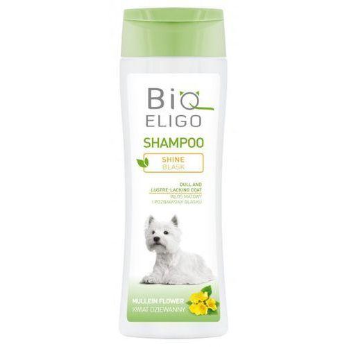 BioEligo Blask Szampon do sierści matowej 250ml, 4740