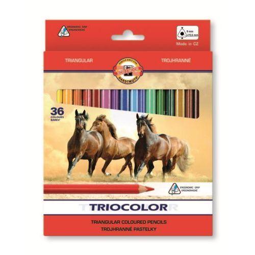 Koh-i-noor Kredki triocolor 36 kolorów 3145 (8593539253730)