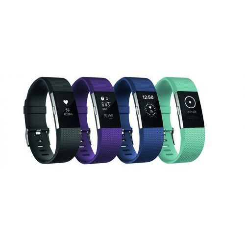 Fitbit Charge 2 (0816137020244)