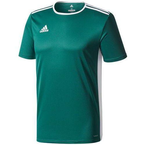 Koszulka entrada 18 junior cd8358 marki Adidas