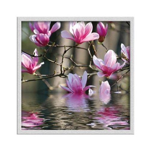 Obraz 30 x 30 cm Magnolie (5901554500228)