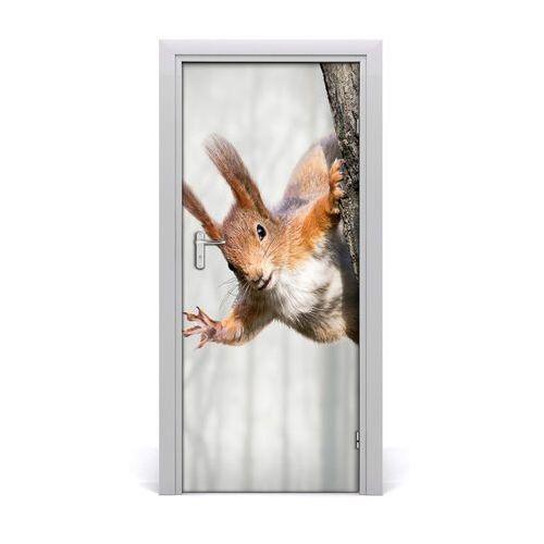 Tulup.pl Naklejka samoprzylepna na drzwi wiewiórka na drzewie