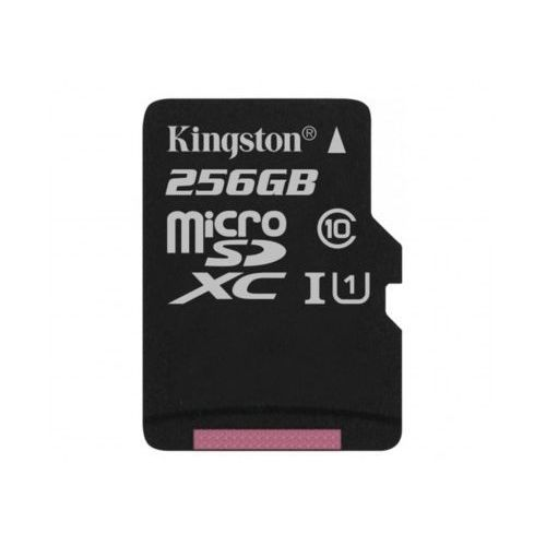 Kingston Karta flash sdc10g2/256gb