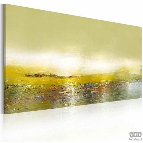 Obraz ręcznie malowany Nadchodząca fala