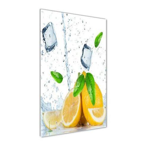 Foto obraz akrylowy do salonu Cytryna i lód