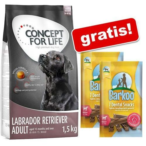 6 kg Concept for Life + Barkoo Dental Snacks, dla średnich psów, 360 g, 14 szt. gratis! - Labrador Retriever Adult (4260358512815)