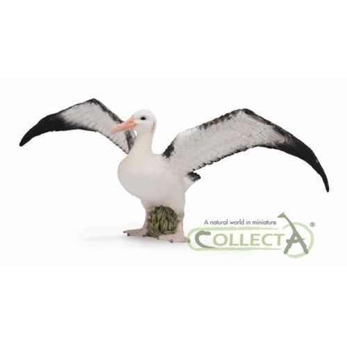Collecta 88765 albatros wędrowny, rozmiar: l (4892900887654)
