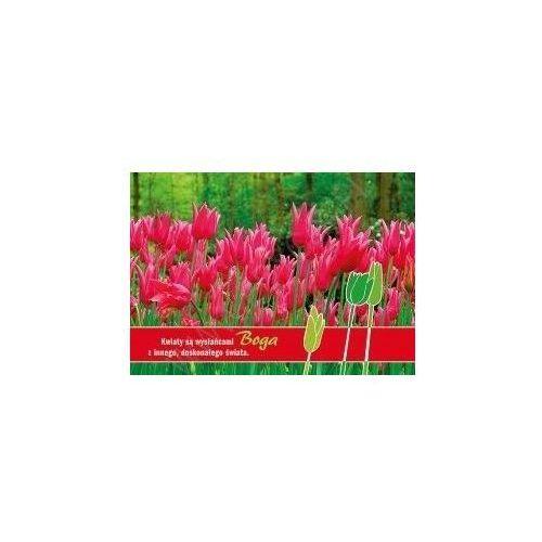 Kartki Tulipan - Bóg - produkt z kategorii- Dewocjonalia