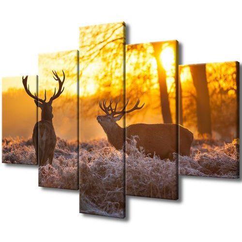 Obraz na ścianę jelenie poroże jelenie na łące ryk marki Cenodi