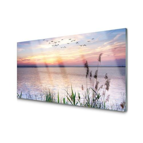 Tulup.pl Obraz szklany morze patki niebo krajobraz