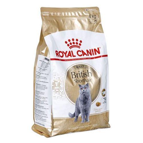 british shorthair adult 4kg marki Royal canin