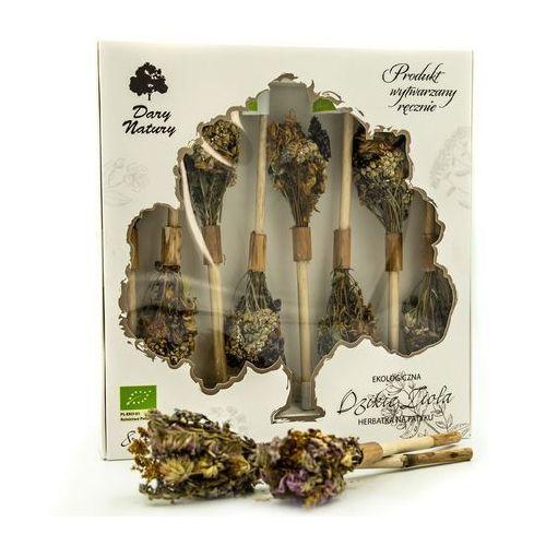 Herbatka na patyku dzikie zioła bio (8 x 2,9 g) - dary natury marki Dary natury - herbatki bio