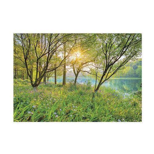 Komar Fototapeta spring lake 368 x 254 cm (4036834085247)
