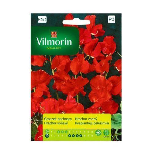 Groszek pachnący CZERWONY nasiona tradycyjne 2 g VILMORIN